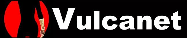 Vulcanetlogosilhouette
